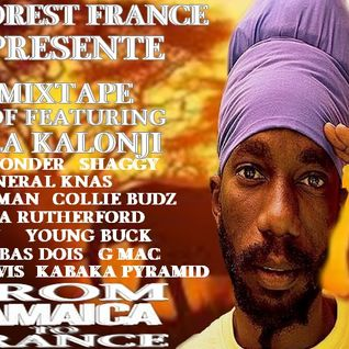 NEW**JUNE**2013 SIZZLA KALONJI MIXTAPE BEST OF FEAT
