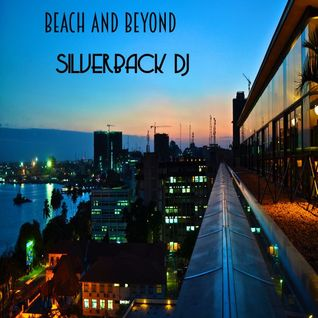 beach n beyond silverback dj