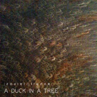 A Duck in a Tree 2014-01-18 | Siphoning Rocks with Bent Knots