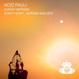 Acid Pauli - Burning Man 2014