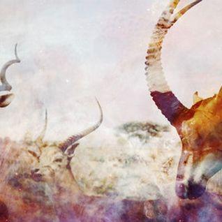 Evrei — Mishka Anniversary Podcast