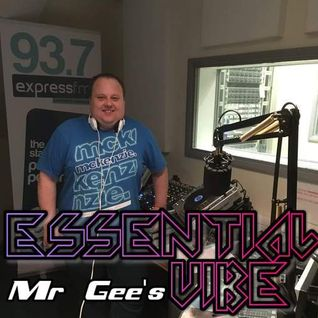 Mr Gee's Essential Vibe (Repeat Playback) - 13th Feb 2016