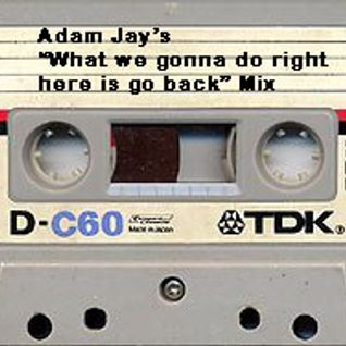 "Adam Jay's ""what we gonna do here is go back"" Mix"