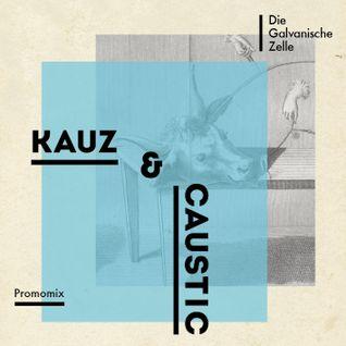 Kauz & Caustic 'Die Galvanische Zelle'