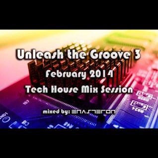 Unleash The Groove 03 - February 2014
