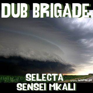 Dub Brigade Episode 3 - selecta sensi I