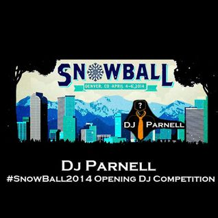 DJ Parnell - #SnowBall2014 Opening Dj Competition