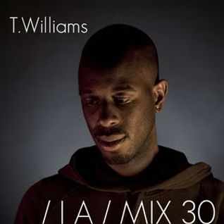 T.Williams Inverted Audio MIX 30 exclusively for Eastern Electrics