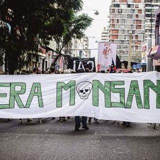 2015-04-06│Movilización ante abusos de Monsanto│Omar Príncipe, Presidente Fededación Agraria