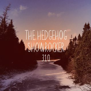 The Hedgehog - Showrocker 310 - 01.12.2016