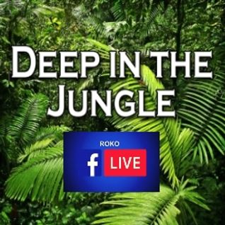 DEEP IN THE JUNGLE...ROKO LIVE....(with full tracklisting available)  & Free Download