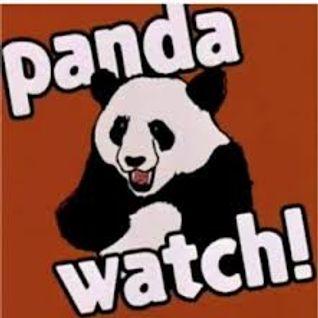 Panda Watch Mix - Mr Messy