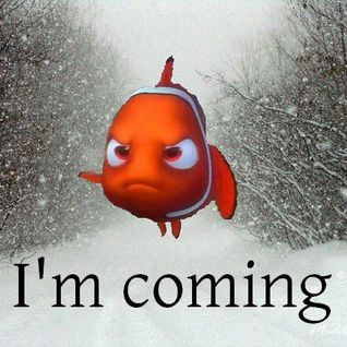 Please Help Me Find Nemo #SnowRave 01