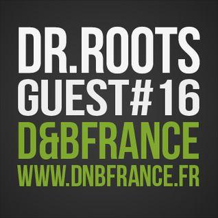 Guest Mix DnbFrance #16 - Docta Roots