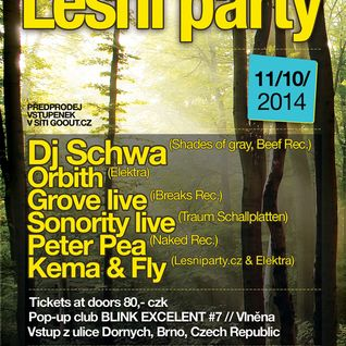 Club Blink #7 Lesni Party - Vlnena, Brno