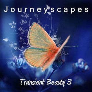 Transient Beauty 3 (#096)