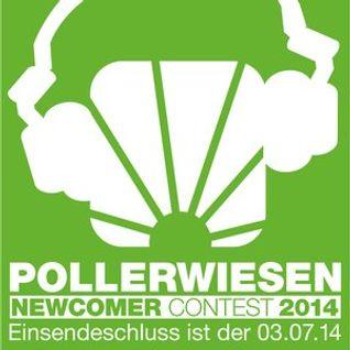 DJ BEAT - Pollerwiesen Newcomer Contest 2014