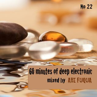 ave fuqua _ 60 minutes of deep electronic No 22