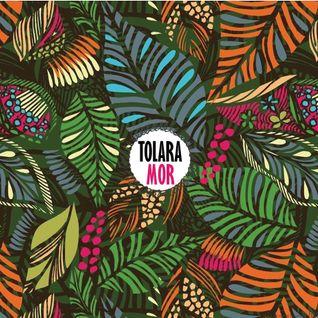 Tolara Mor - week 02