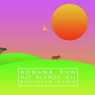 HJ7 Blends #11 (Adnana Sun)
