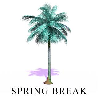 spring break '13