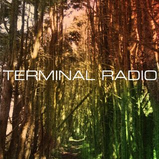 Terminal Radio - International Debris (TRFM4)