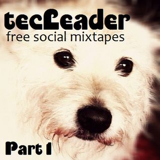 the tecLeader Part1 - free social mixtapes -  Mixed By DJ Kayowa