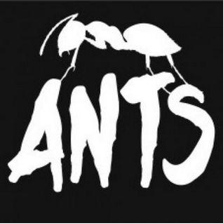 Joris Voorn b2b Nic Fanciulli - Live @ ANTS, Ushuaia Beach Hotel (Ibiza) - 19.07