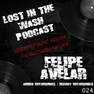 LOST IN THE WASH PODCAST 024 - FELIPE AVELAR