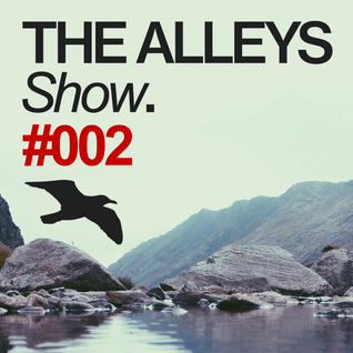 THE ALLEYS Show. #002 Huminal