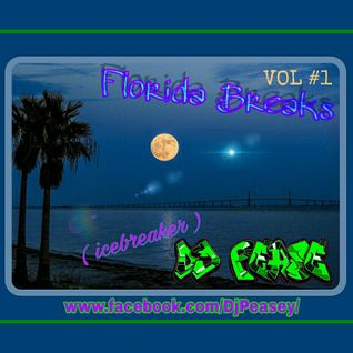 Florida Breaks ( Icebreaker ) - by Dj Pease