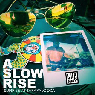 A Slow Rise