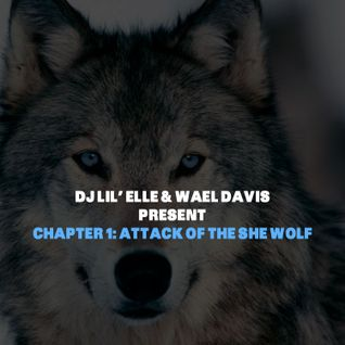 Chapter 1: Attack of the She Wolf w/ Wael Davis