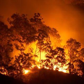 de Hessejung@BunkerTV: Steppenbrand 14.07.2012 01:00