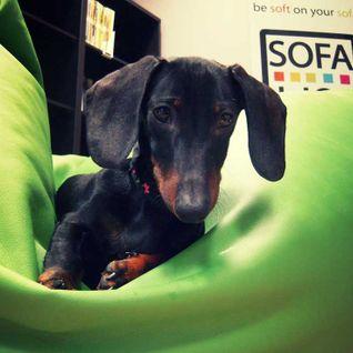 saturday with sofa .....   jazz bossa brasil      leegas selection(23-01-16)