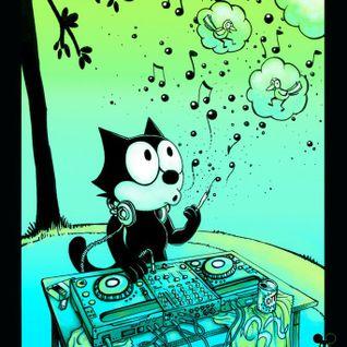 DJ Felix - Journey Into Deep With A Funky Detour vol 1