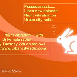 Dj female rabbit-Night vibrations #06 for Urban city radio