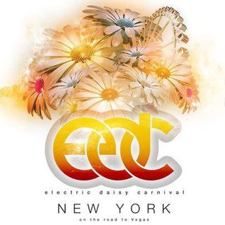 Sied van Riel - Live @ Electric Daisy Carnival (New York) - 19.05.2012