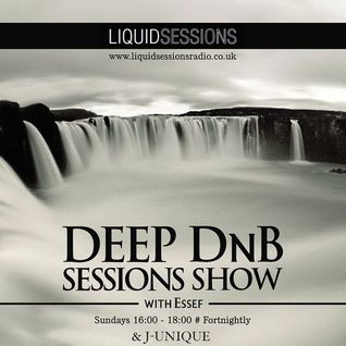 J-Unique, Guest Mix @ Deep DnB Sessions 05.01.2014
