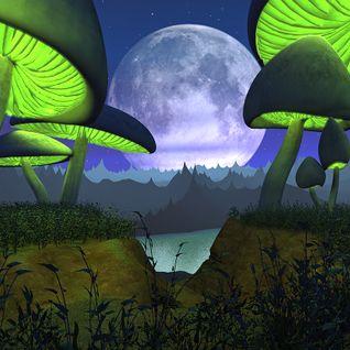MLH: Fairy Tale Musik Festival Dubstep Set
