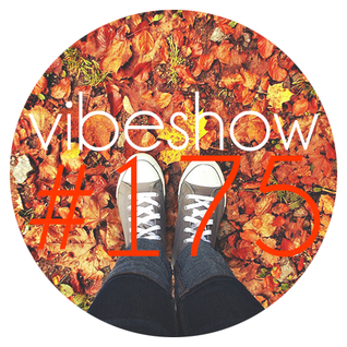 Paul Damixie`s Vibeshow #175