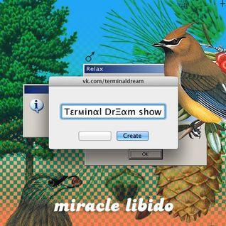 Terminal Dream Team #2
