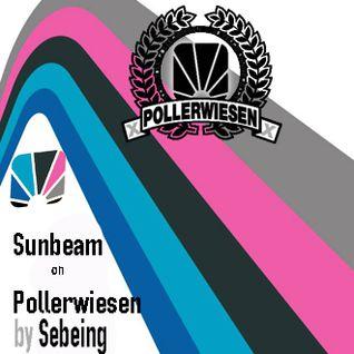 Sunbeam On Pollerwiesen by Sebeing