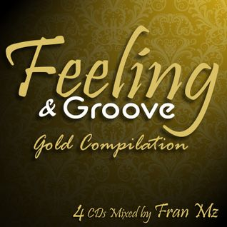Feeling & Groove Gold Edition 01 (SoulFul)