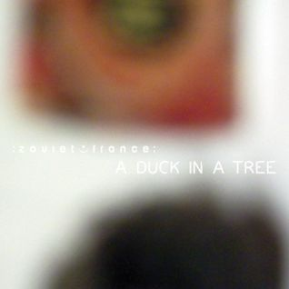 A Duck in a Tree 2014-03-08 | Between Voluminous Atmospheres