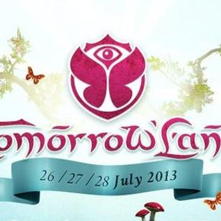 Viktor Bodrovski at Tomorrowland 2013 (Desperados Stage)