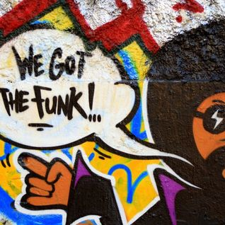 We Got the Funk- Sglusac Va & Bruce Hullter