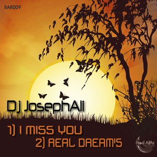 Dj JosephAli  I Miss You(Clip)