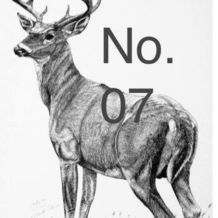 DEER Selections No. 07