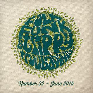Folk Funk and Trippy Troubadours 32